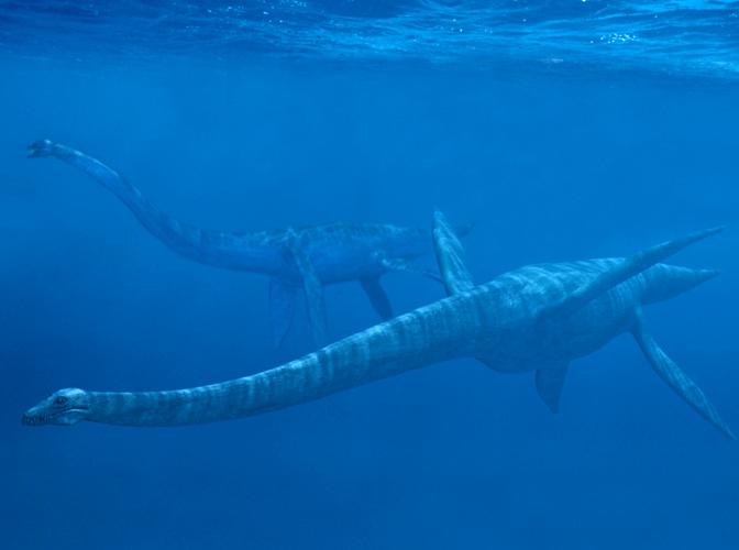 plesiosaur1.jpg