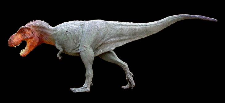 tyrannosaurusrex1.jpg